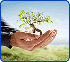 environment nonprofit software