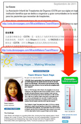Individual Fundraising Page Example